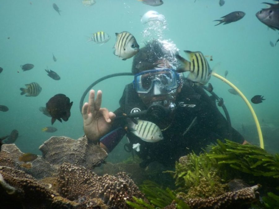 Scuba Diving in Goa
